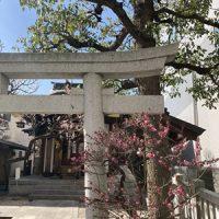 神楽坂花だより~着物で北野神社、おすすめです